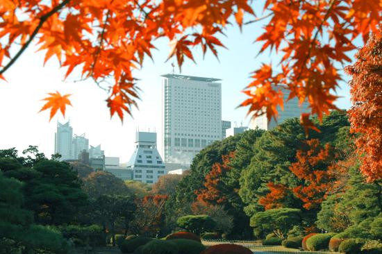 Hotel Century Southern Tower: Hotel Century Southern Towre view from Shinjuku Gyoen National Garden in autumn/新宿御苑より望むホテル