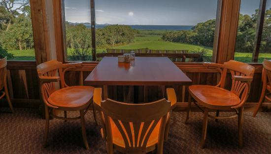 Waratah North, ออสเตรเลีย: The cafe area at the Lodge