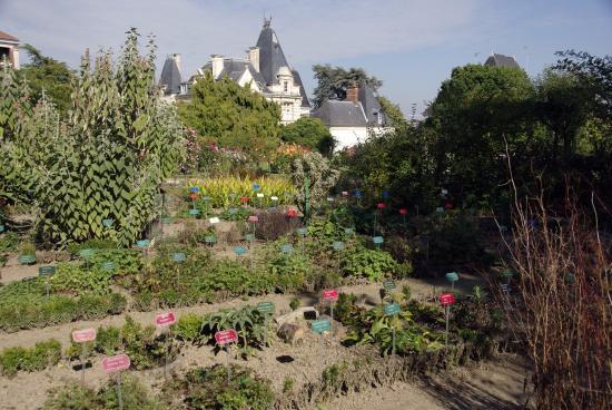 Jardin botanique fotograf a de parc du thabor rennes for Boulevard du jardin botanique 20