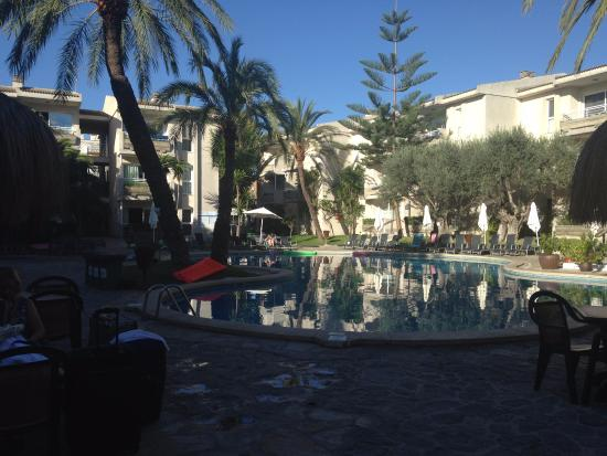 Apartments Oro Playa: pool area, not bad but holidaymakers expected to lie on broken sun loungers