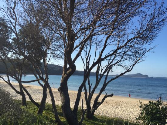 Myall Lakes National Park, Αυστραλία: photo1.jpg