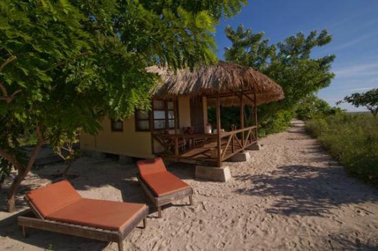 Alor Divers Eco Resort : beach