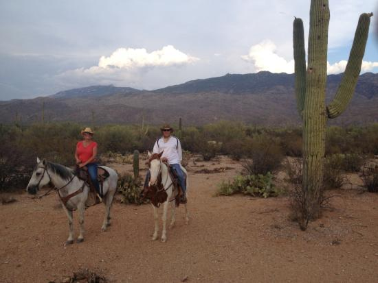 Sunset Saguaro National Park Ride Picture Of Houston S