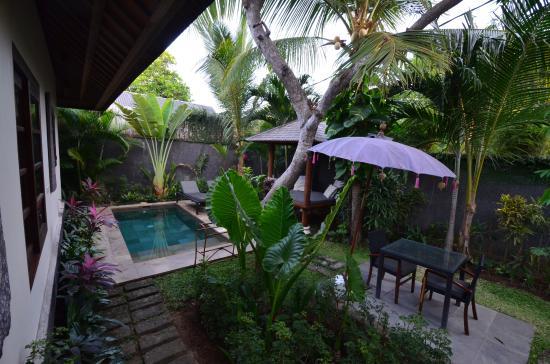 Mango Tree Villas: Piscine et jardin