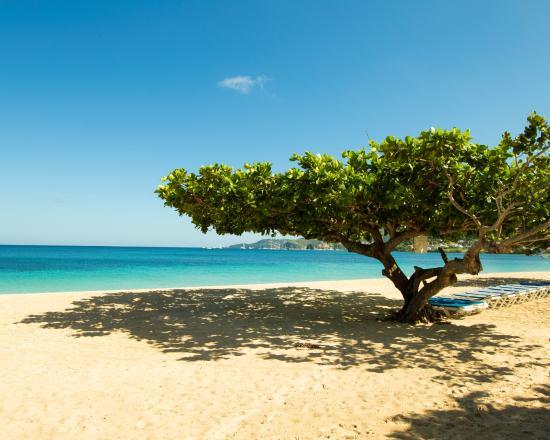 Radisson Grenada Beach Resort Grand Anse Immediately In Front Of The