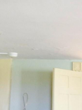 Blueberry Hill Inn: Cracked ceiling