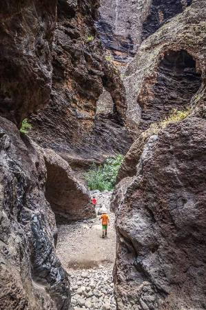 Walking Barranco de Masca - Picture of Masca Walk, Masca - TripAdvisor