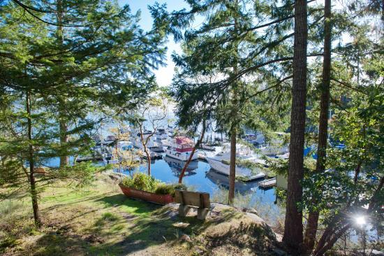 Garden Bay, Kanada: View from cottage #7