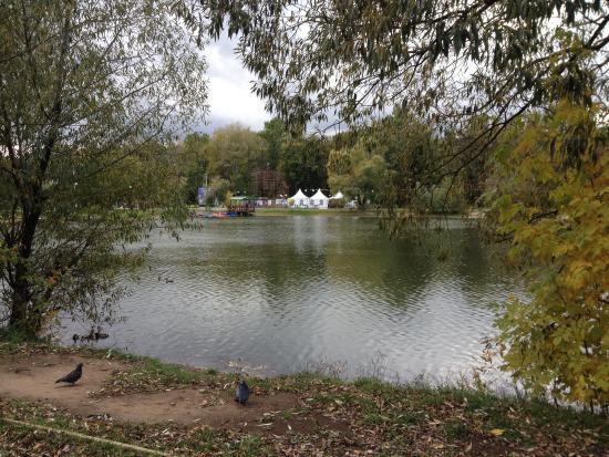 люберцы наташинский парк фото