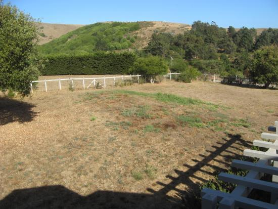 Point Reyes Country Inn & Stables: View From Balcony