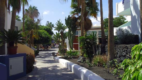 Apartamentos THe Morromar: Lovely grounds