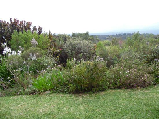 Fynbos Ridge Country House & Cottages: Stunning Views