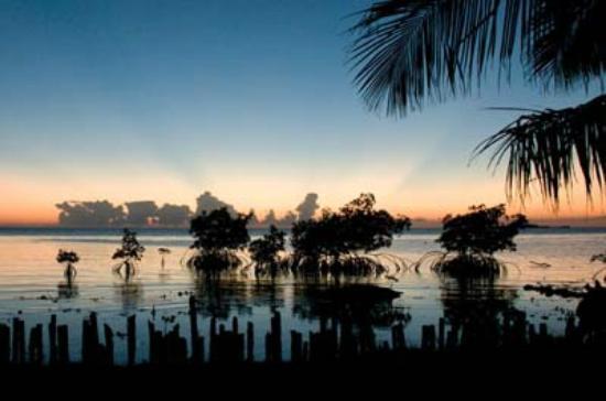 Whipray Caye Lodge: Sunrise at Whipray Caye