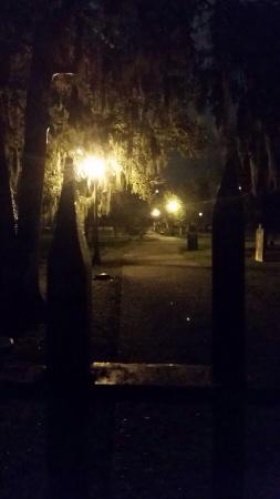 Haunted Savannah Tours: photo0.jpg
