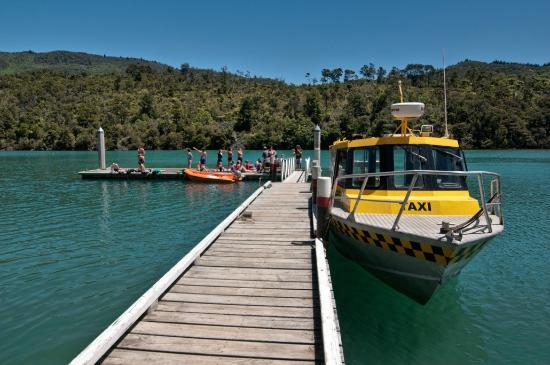 Queen Charlotte Track: Arrive by water taxi