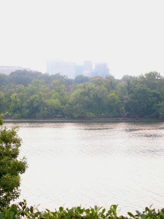 Shear Madness: Kennedy Center - Blick auf Potomac und Roosevelt Island