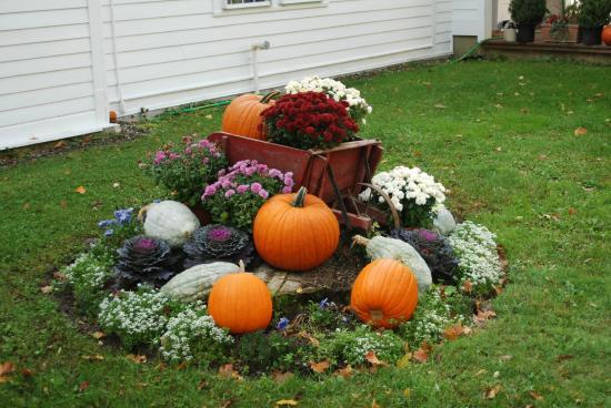 """Castleton, VT: Vermont Fall """"Flower"""" Bed"""