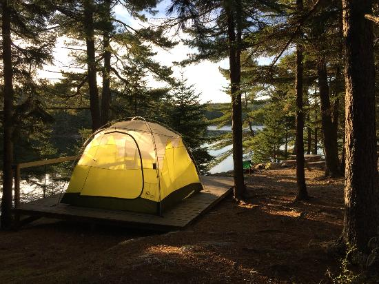 Mount Desert Campground: B10 in the afternoon.