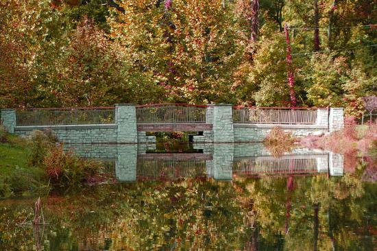 Hills and Dales MetroPark: Bridge over the far side of Dogwood Pond