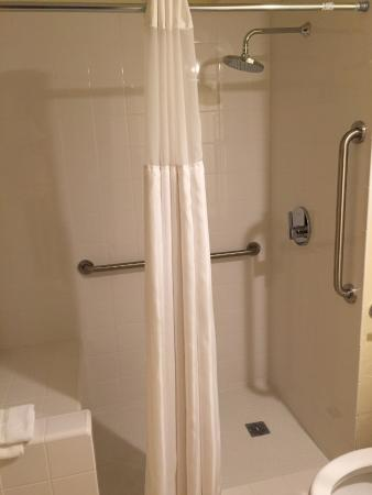 Lodge at Bromley: Large walk in shower in our room