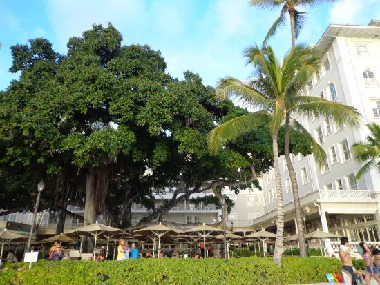 Moana Surfrider A Westin Resort Spa Beach Bar
