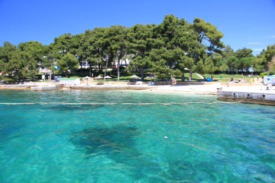 Hotel Plavi: Прибрежная территория
