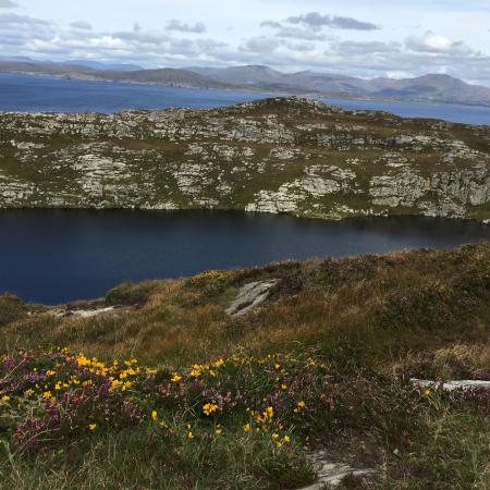 Durrus, Irlande : photo5.jpg
