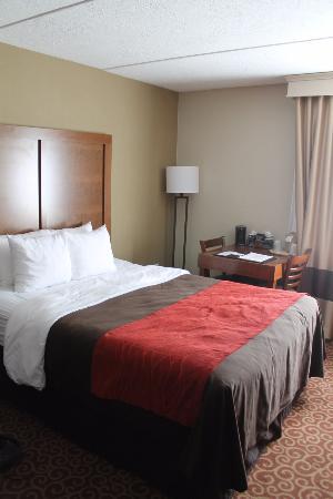 Comfort Inn Bangor : Queen Size Bed