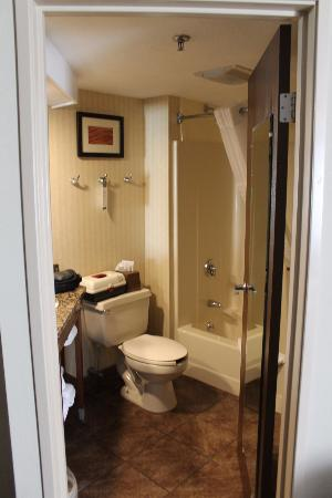 Comfort Inn Bangor: The Bathroom