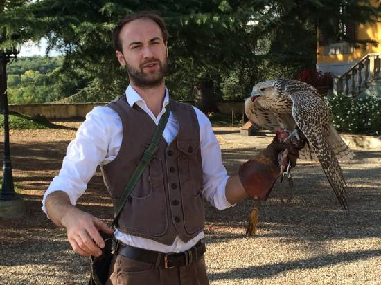 Vicchio, Italia: Explaining falconry