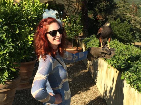 Vicchio, İtalya: Holding the falcon