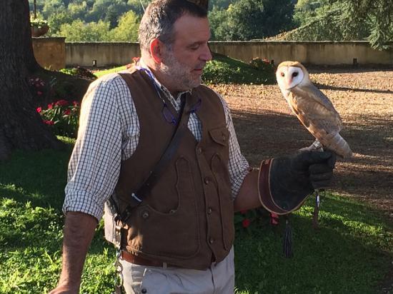 Vicchio, İtalya: Antonio with a barn owl