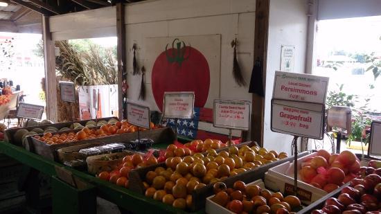 Loxley, AL: Veggies