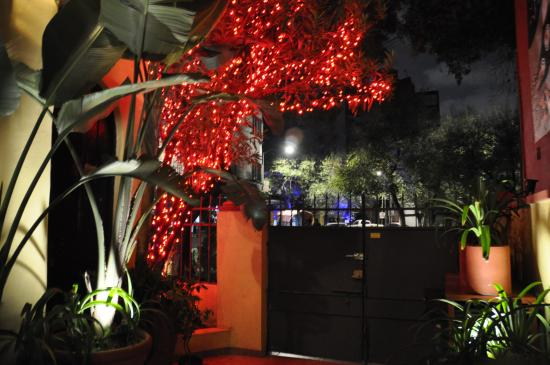 The Red Tree House: Red Tree at the Entrance