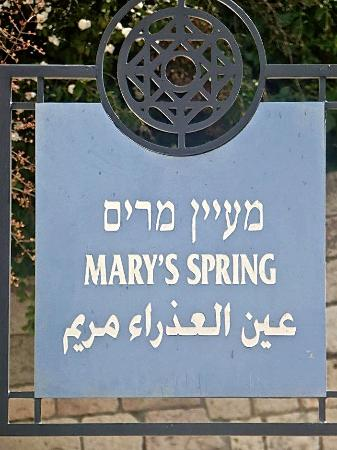 Mary's Spring