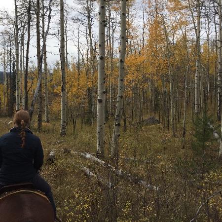 Clark, CO: Elk River Guest Ranch