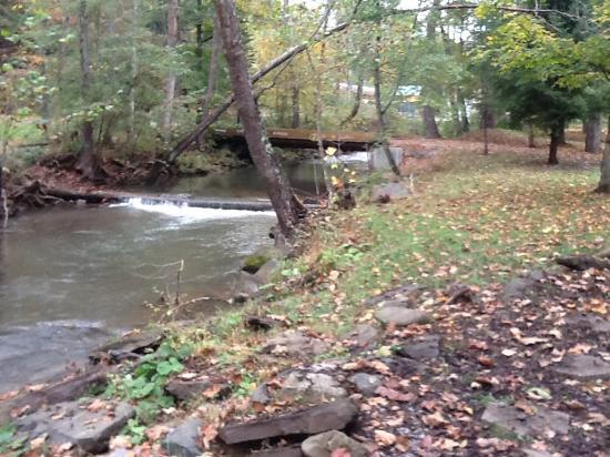 Barnett Cabin Rentals : View of stream in front of cabin