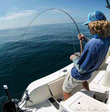Fly Fishing For Mako Sharks In San Diego Picture Of Off The Hook Fly Fishing Napa Tripadvisor