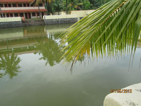 ‪‪Cherthala‬, الهند: Pond of Thiruvizha Temple‬