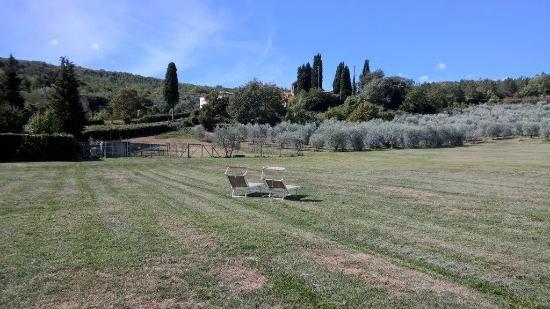 Vicchio, Italien: Relax in campagna