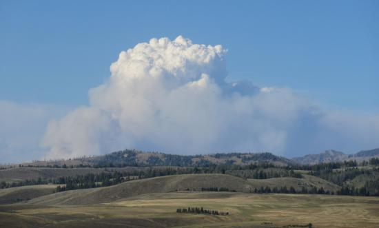 Smoke Billowing From Forest Fire, Sawtooth National Forest, Idaho