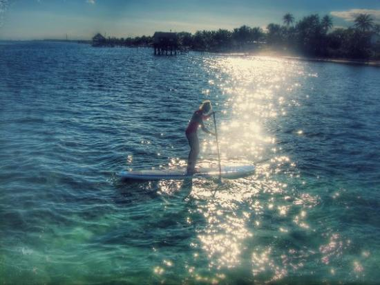 Ak'bol Yoga Retreat & Eco-Resort: Paddle-boarding and enjoying all the shades of turquoise!