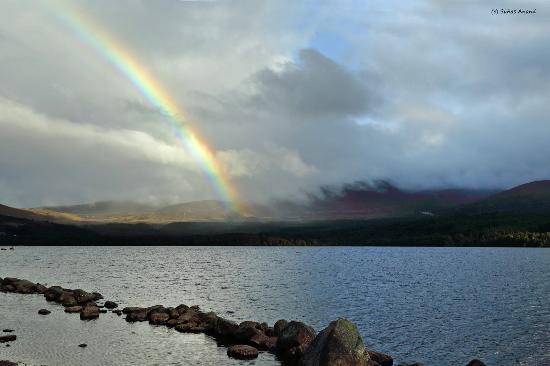 Fairwinds Hotel: Loch Murlich 10 minutes drive
