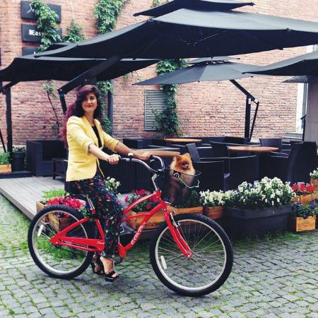 Segway and Bicycle Rent and Excursions