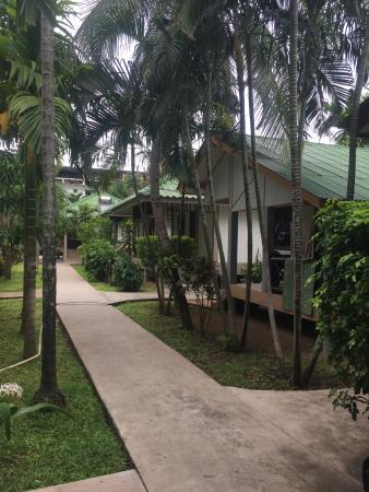 Lamai Inn 99: территория отеля