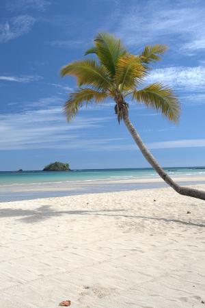 Chez Eugenie: beach