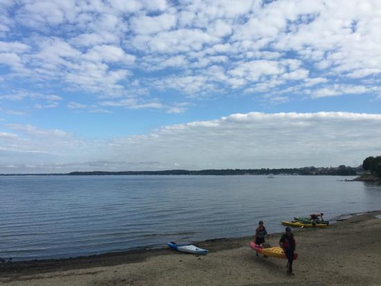 Oakledge: 호수