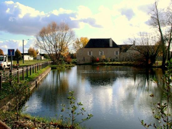 Sainte-Marie-la-Blanche, France: Etang de Sainte Marie La Blanche