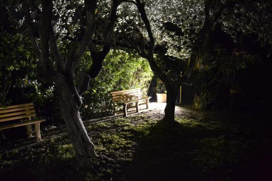 C'est La Vie: Suggestivo angolo del giardino interno in estate