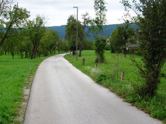 The peaceful country lane leading to Apartments Sasha, five minutes from the centre of Bled